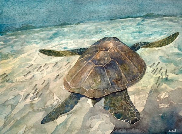 Seaturtle, honu, watercolor, ocean, maui, art