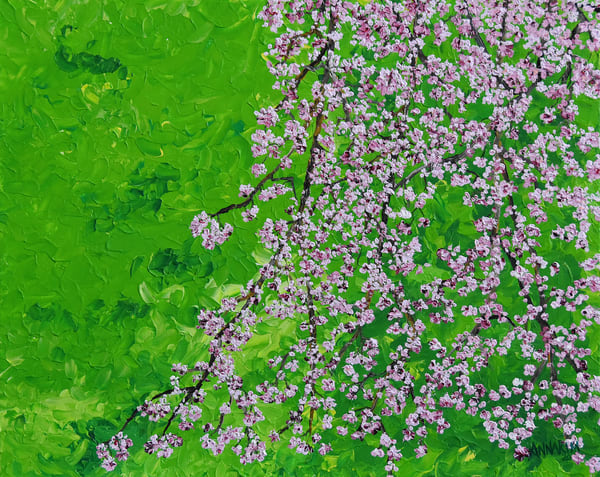 Weeping Cherry Blossom in Japan Art – Original Paintings – Fine Art Prints on Canvas, Paper, Metal & More