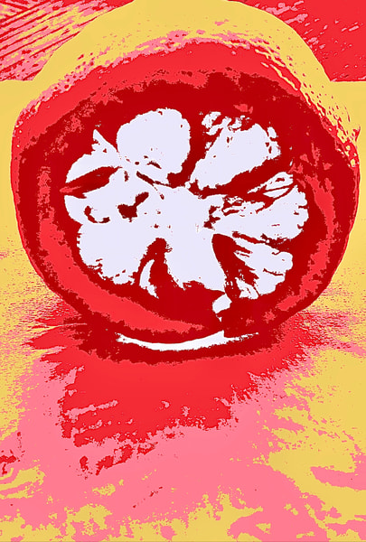 Pop Lemon Art | Studio Artistica