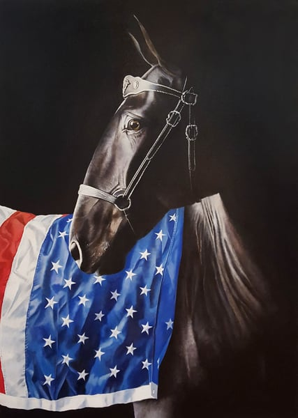 Darkhorse Canvas Reproductions