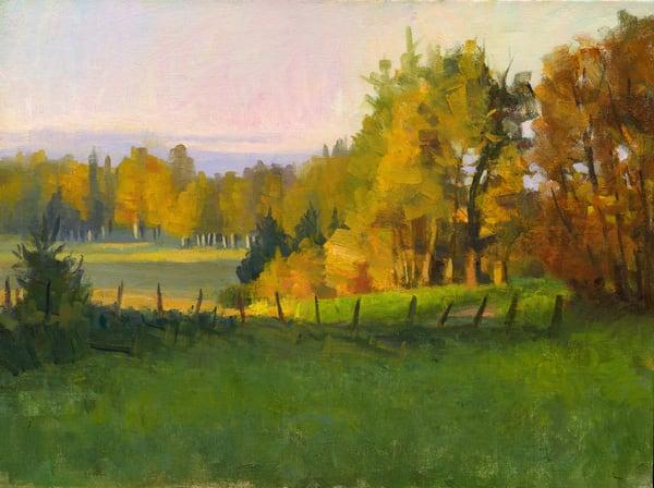 Distant Fields Art | Studio Girard