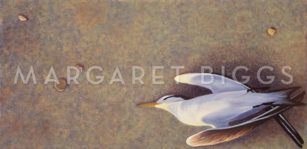 No Longer To Fly Art   Margaret Biggs Fine Art
