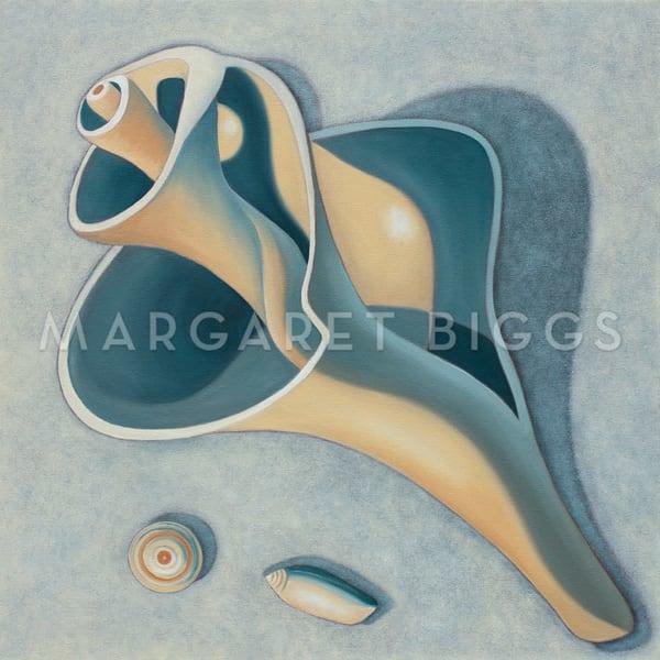 Shell Spiral Art   Margaret Biggs Fine Art