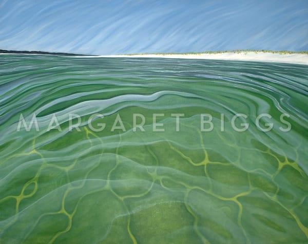 Swim With Me Art   Margaret Biggs Fine Art