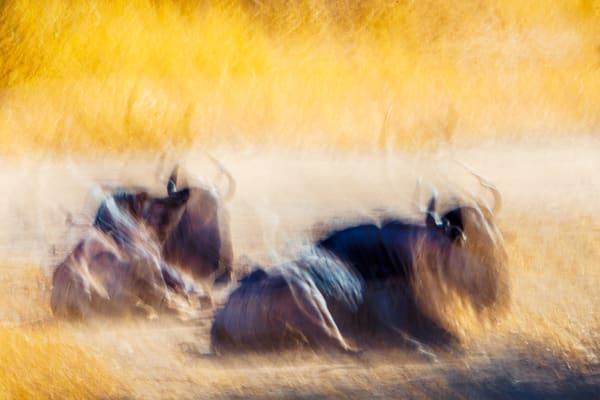 Travel Abstract 01556 Photography Art | Dan Chung Fine Art