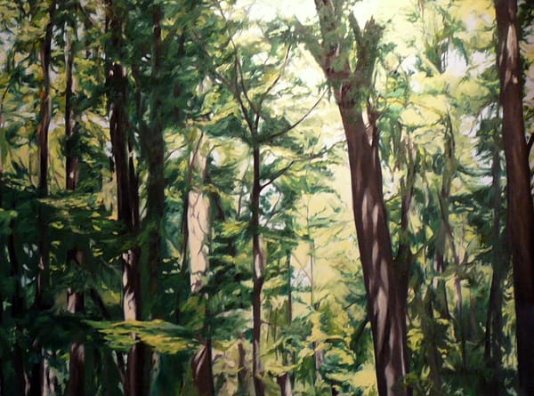 Tree Tops In Early Spring Art   Helen Vaughn Fine Art