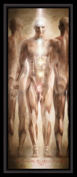 A Study Of The Male Anatomy, Limited Edition, Encaustic,