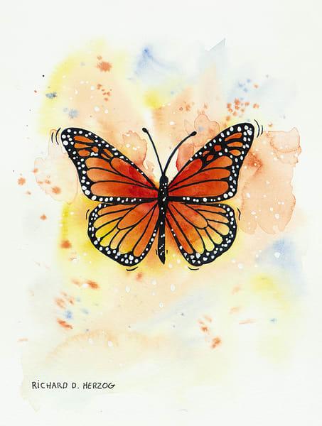 Butterfly 9 Art | Cincy Artwork