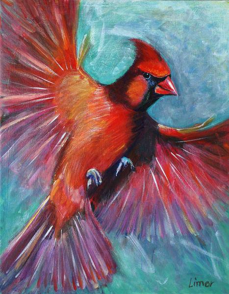 Curious Cardinal Art | Limor Dekel Fine Art