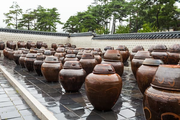 These are traditional pots that is used to hold various fermented sauces for the royal kitchen in Seoul Palace, Korea.  This area is designated for this purpose only.  Fermented sauce serves as a base for most traditional Korean dishes so they were