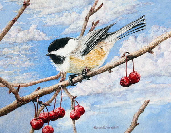 Black Capped Chickadee Art | artalacarte