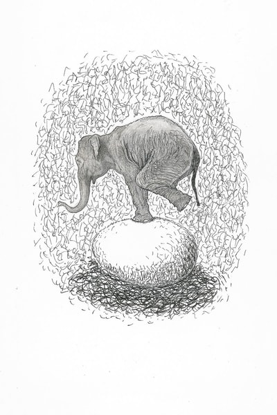 Elephant On Eggshell Art | Digital Arts Studio / Fine Art Marketplace