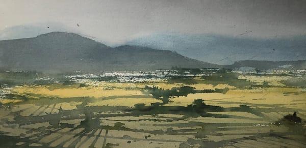 Yellow Fields Art | Nishitas Art
