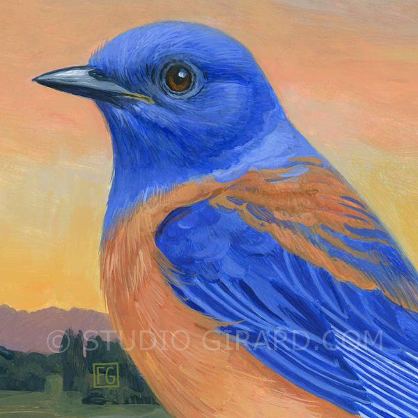 Western Bluebird Bird Block | Studio Girard