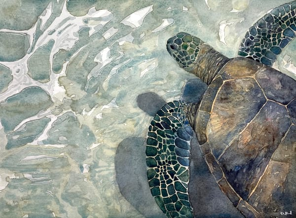 seaturtle, turtle, sea, ocean, art, watercolor
