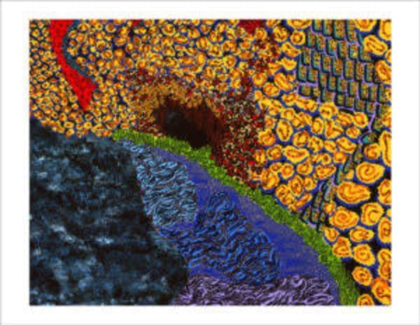 Sacred Cave Art   Goldwoman Fine Art