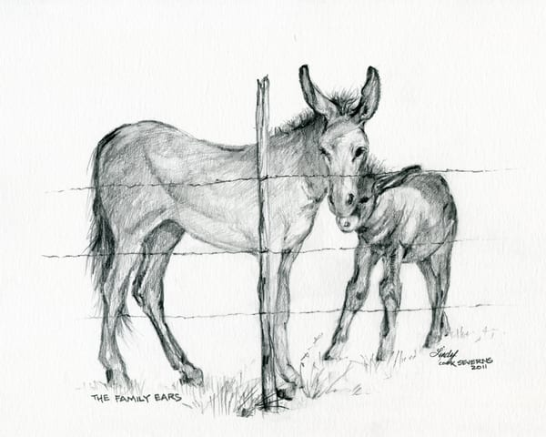 Lindy Cook Severns Art | The Family Ears, print