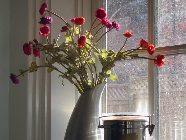 Ann's Flowers Art | Shed Art