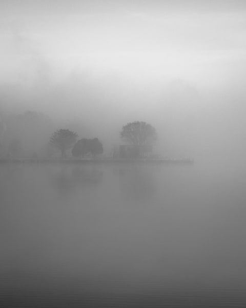 Retreating Fog - North Cove