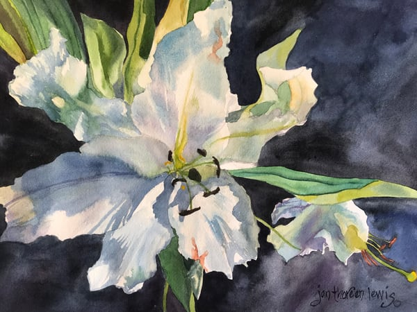 Lily Light Art | Jan Thoreen Lewis Fine Art