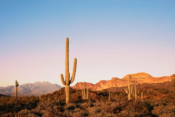 Four Peaks Wilderness At Twilight Photography Art | POLAROIDS AND A POSTCARD