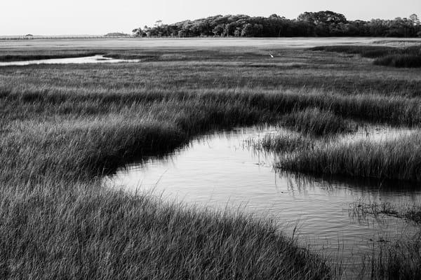 Intercoastal Marshes