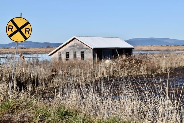 Marshland Crossing