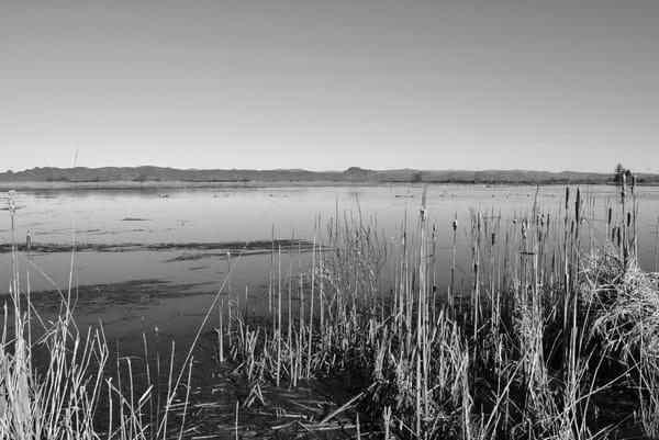 Marshlands Photo