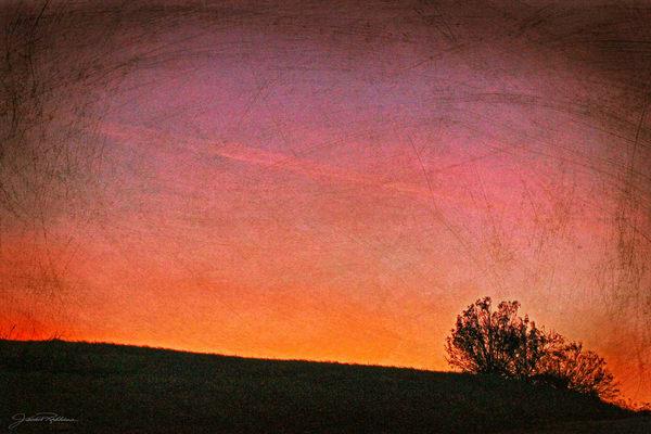 sunset pinklight pink canyonarroyo