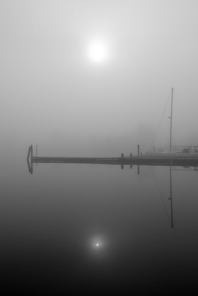 Morning Fog in Essex