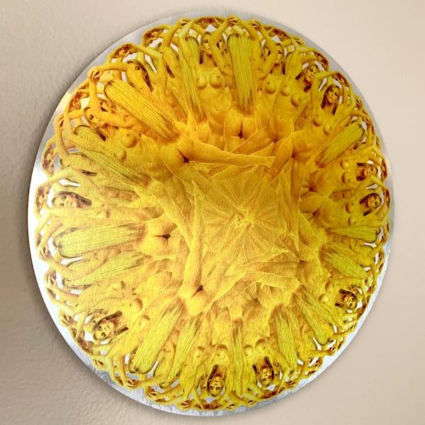 #2 The Texas Wildflower Art   geometricphotographica