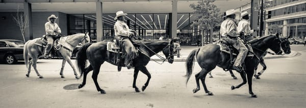 A group of horse riders on the street of Washington DC, captured on a panoramic camera.