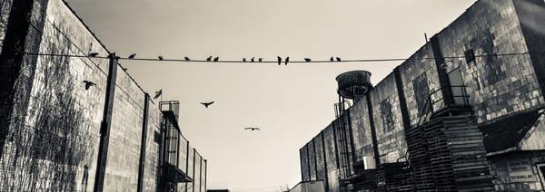 Urban Bw 14 Photography Art | Dan Chung Fine Art