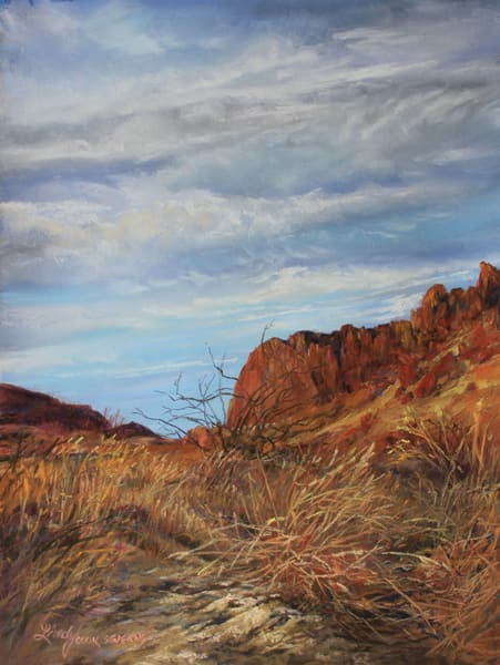 Lindy Cook Severns Art | Sunwashed Arroyo, print