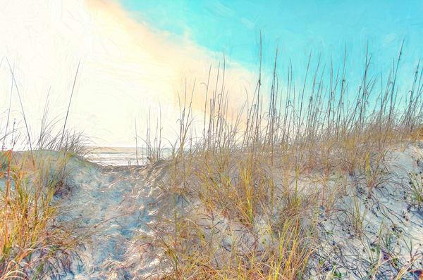Island dune path on Amelia Island