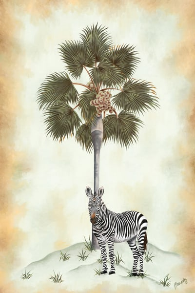 Zebra And Palm   Limited Edition  Art | Mercedes Fine Art
