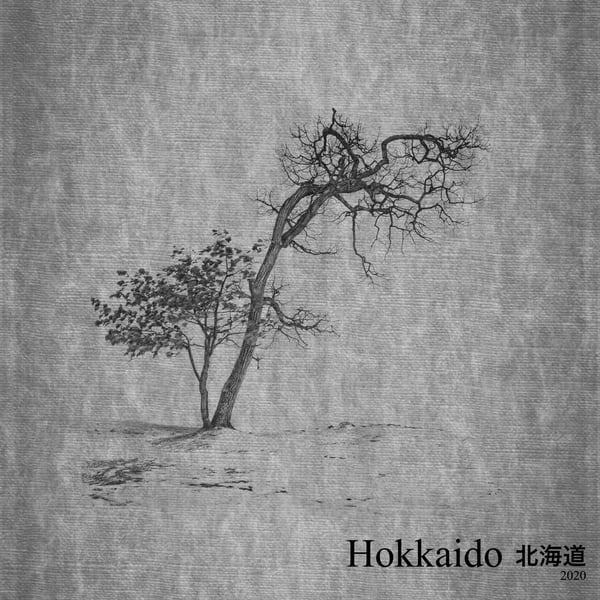 Landscape Books