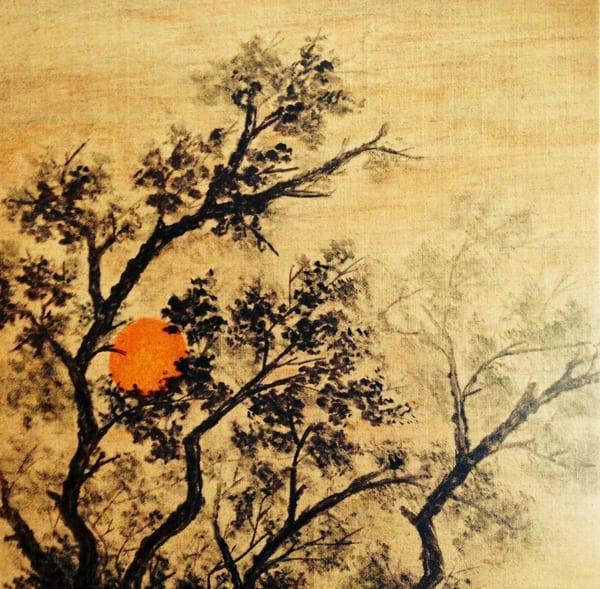 Late Sun On Gold Art   donnadacuti
