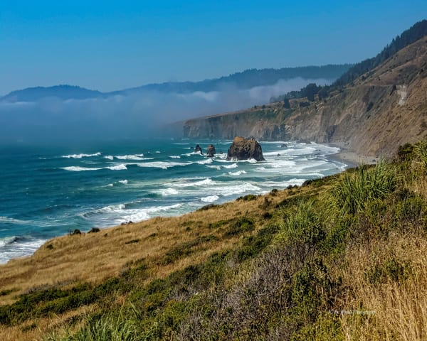 Pacific Ocean Overlook Photography Art | N2 the Woods Photography