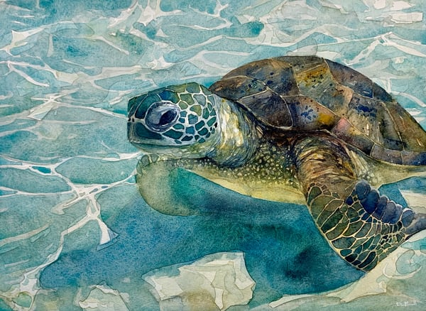 watercolor, ocean, art, fineart, seaturtle, turtle, honu, maui