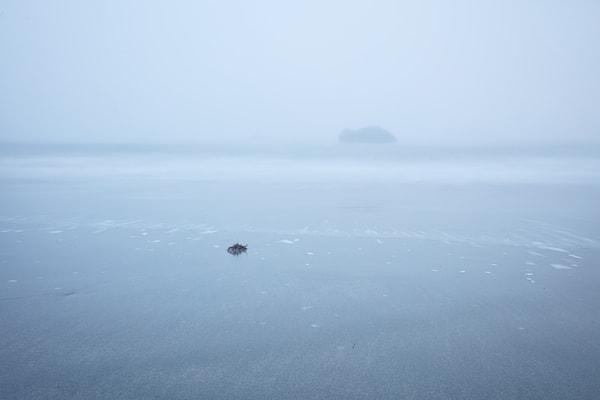 Alone In The Fog Art | Chad Wanstreet Inc