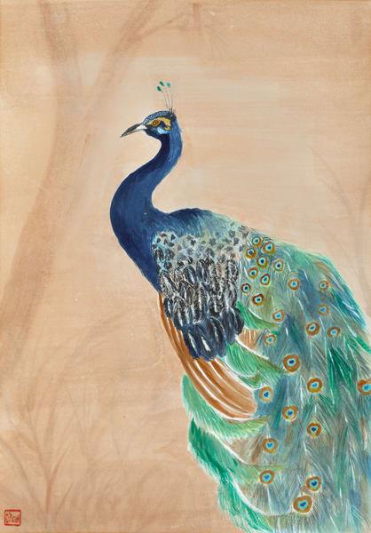 Peacock At Dusk Art | donnadacuti