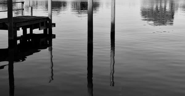 Bayou Reflections Art   Renee Bitinas Fine Art