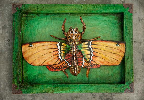 The Rare Double Sighted Death Mask Moth Art   artalacarte