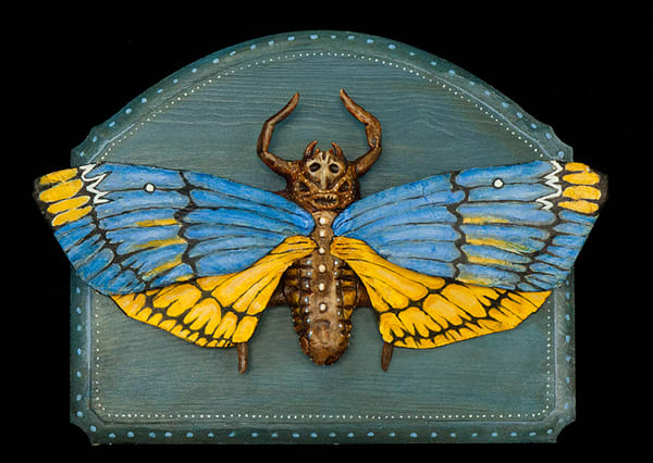 The Rare Spotted Death Mask Moth Art   artalacarte