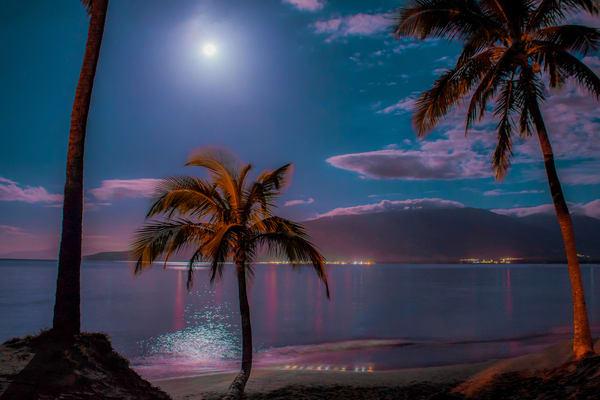 Maui Moonlight Magic   Hwp046 Art   Pictures Plus
