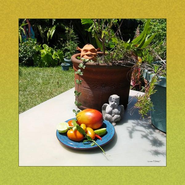 Mango Salsa Ingredients & Garden Characters