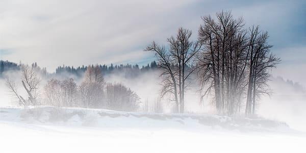 Goat Island in Winter | Terrill Bodner Photographic Art