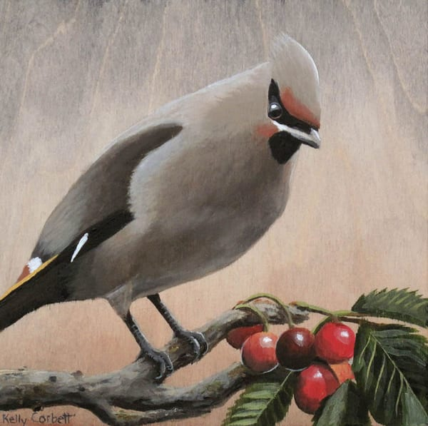Waxwing Painting