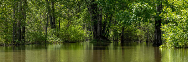 Spring Flood   Terrill Bodner Photographic Art
